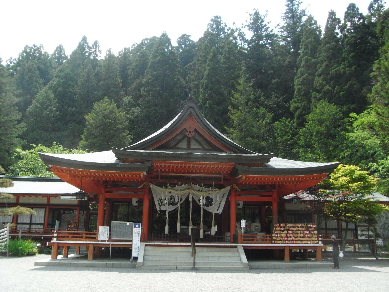 神社本殿(金櫻.jpg
